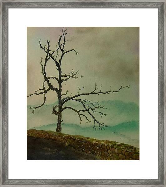 Sentinel Of The Shenandoah  Framed Print