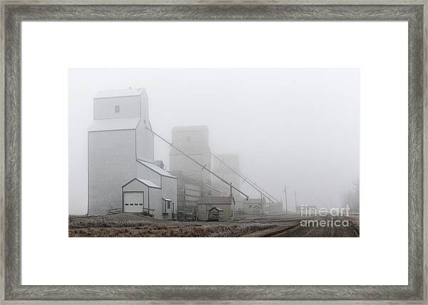 Sentinels In The Fog Framed Print