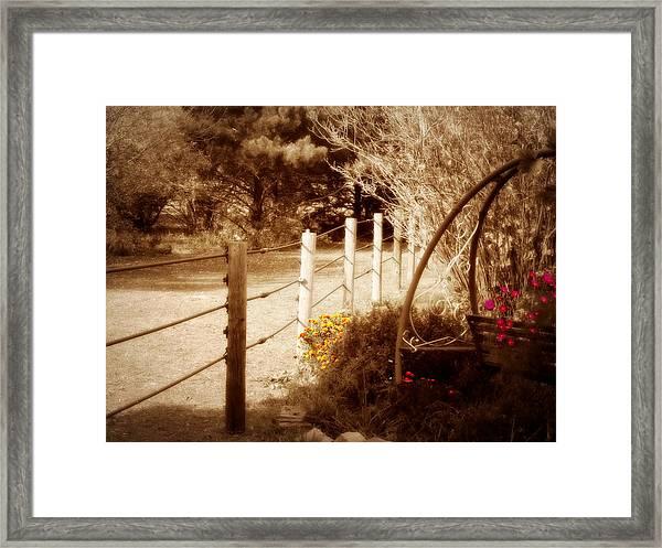 Sepia Garden Framed Print