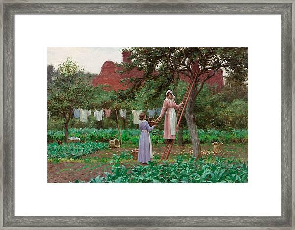September Framed Print