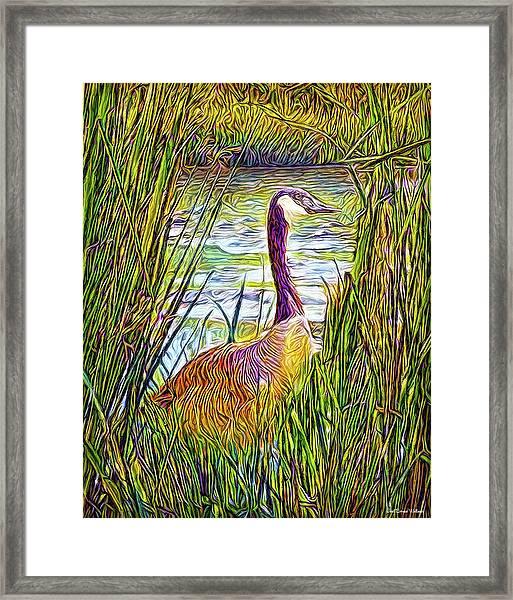 Serene Goose Dreams Framed Print