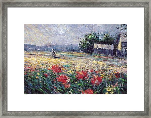 Serenety Framed Print