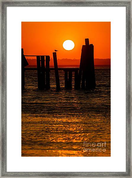 Framed Print featuring the photograph Serenity  by DJA Images