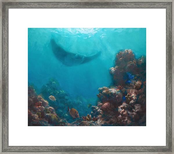 Serenity - Hawaiian Underwater Reef And Manta Ray Framed Print
