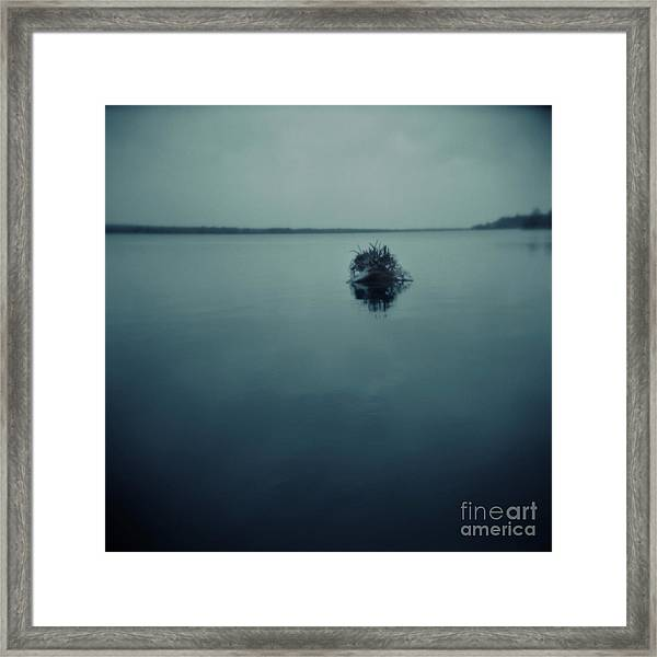 Series Wood And Water 1 Framed Print