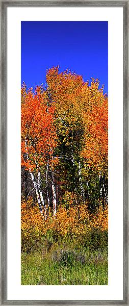 Set 54 - Image 2 Of 5 - 10 Inch W Framed Print