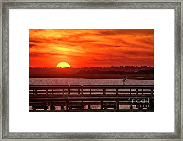 Framed Print featuring the photograph Setting On The Heron by DJA Images