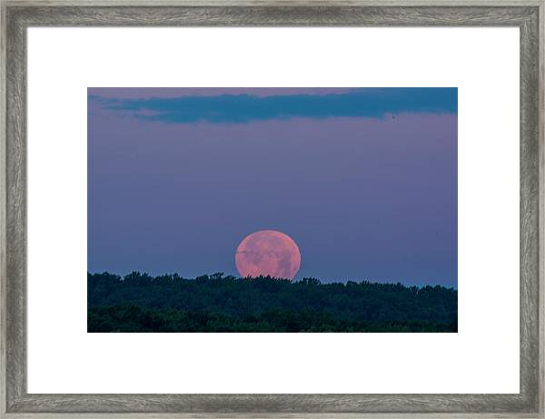 Setting Strawberry Moon Framed Print