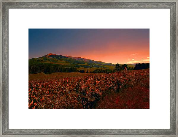 Setting Sun In Crested Butte Framed Print