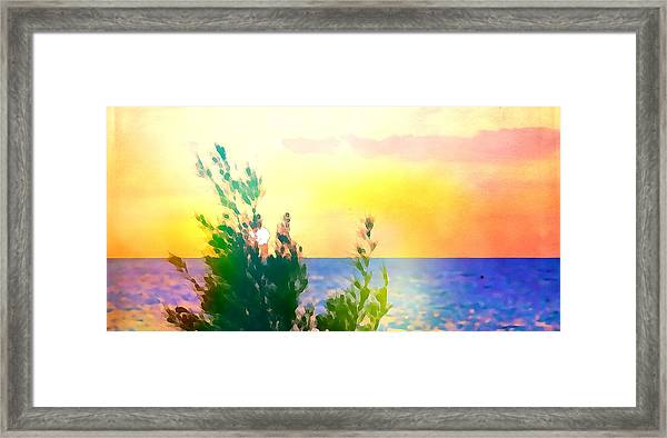 Pastel Colors On The Atlantic Ocean In Cancun Framed Print