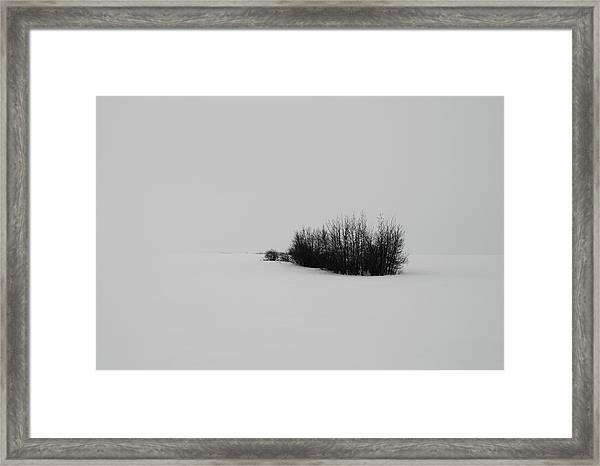 Seventies  Framed Print
