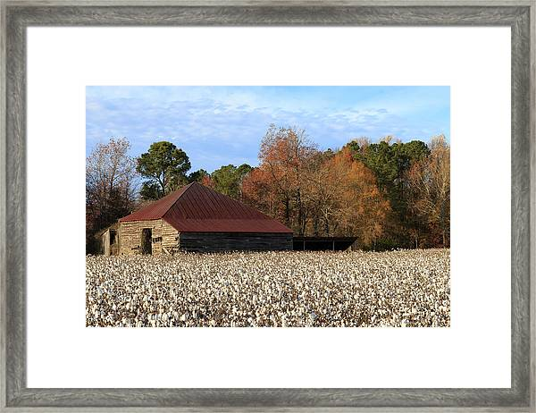 Shack In The Field Framed Print