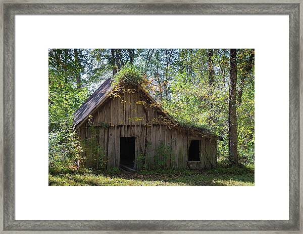 Shack In The Woods Framed Print