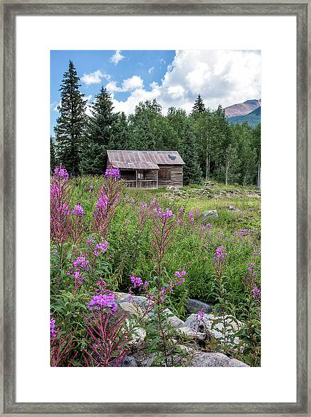 Shack With Fireweed Framed Print