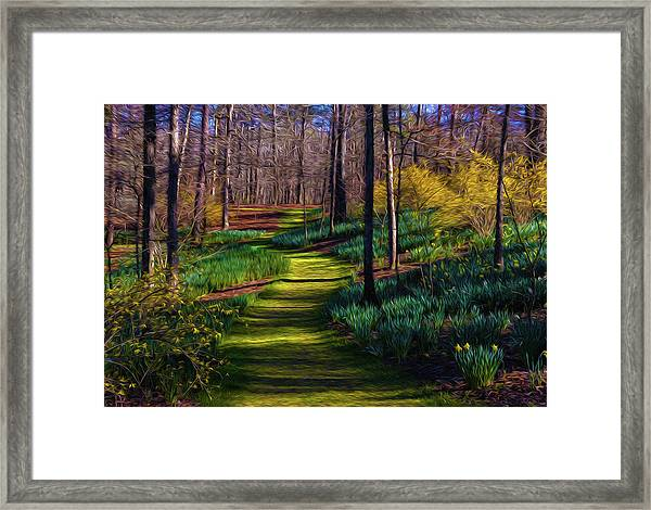 Shaded Spring Stroll Framed Print