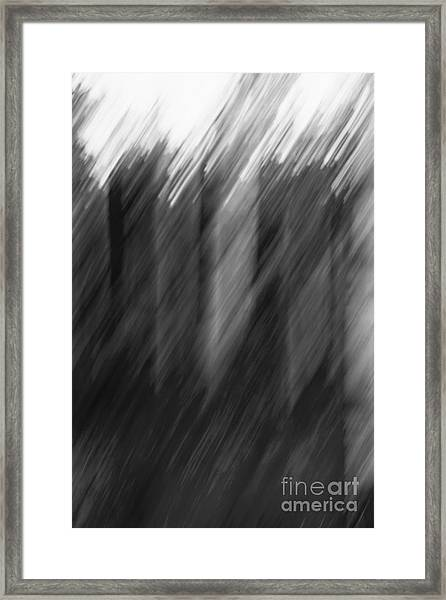 Shades Of Black And White Framed Print