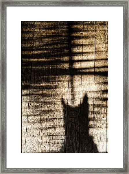 Shadow Cat Framed Print