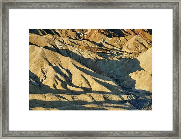 Shadow Delight Framed Print