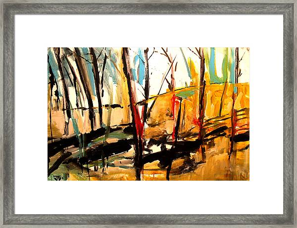 Shadow Trees Framed Print