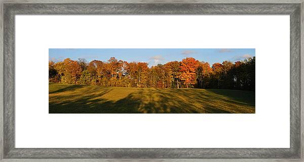 Shadows Bow Framed Print