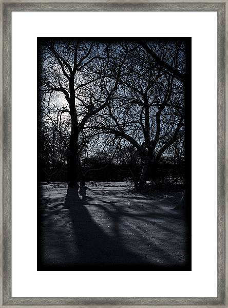 Shadows In January Snow Framed Print