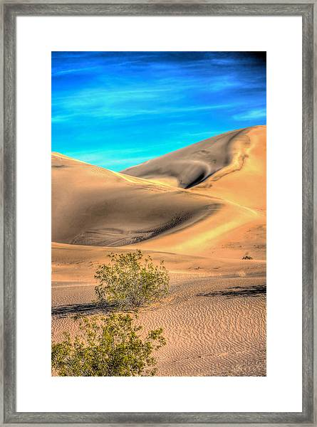 Shadows In The Sand Framed Print