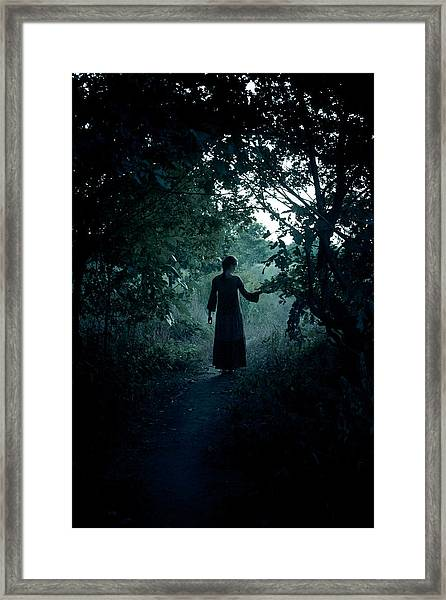 Shadowy Path Framed Print
