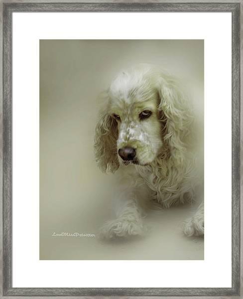Saint Shaggy Art 7 Framed Print