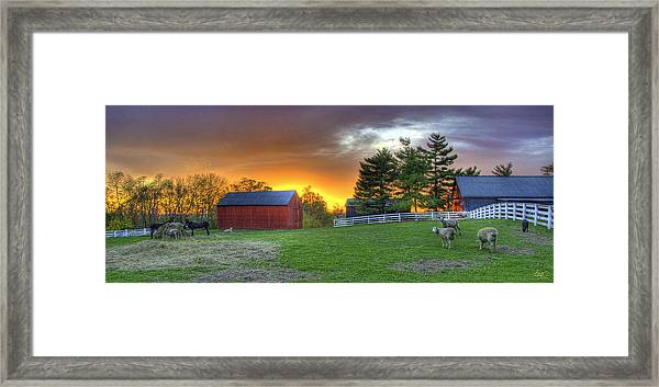 Shaker Animals At Sunset Framed Print