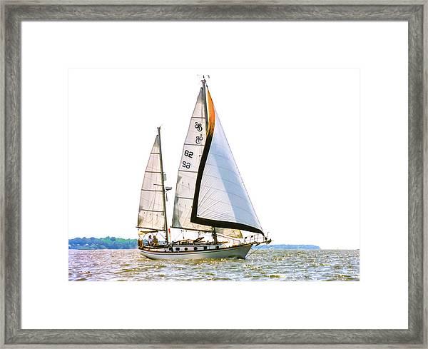 Shannon 38 Kittiwake On Chesapeake Bay Framed Print