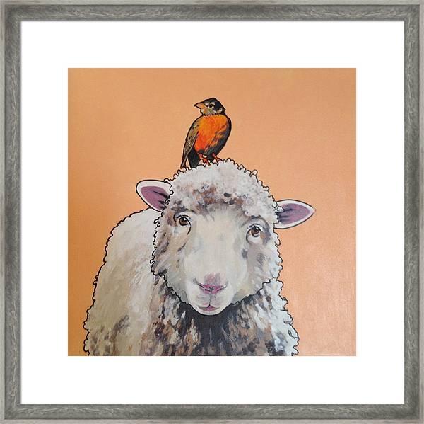 Shelley The Sheep Framed Print