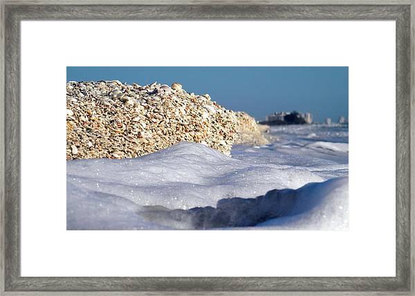 Shells Galore Framed Print