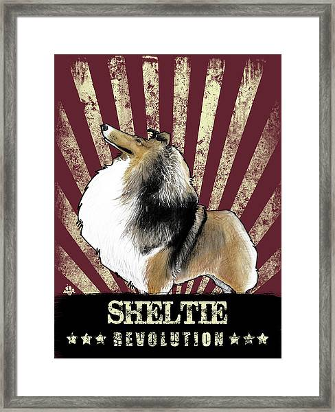 Sheltie Revolution Framed Print