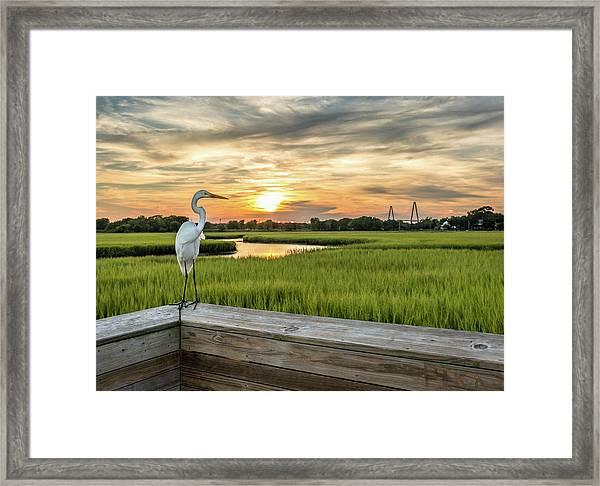 Shem Creek Pier Sunset Framed Print
