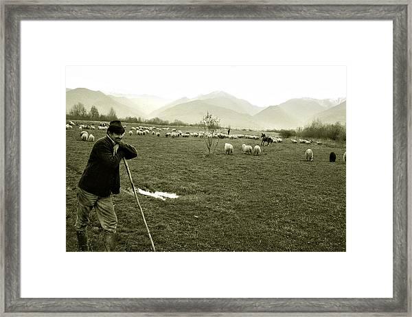 Shepherd In The Carpathians Mountains Framed Print