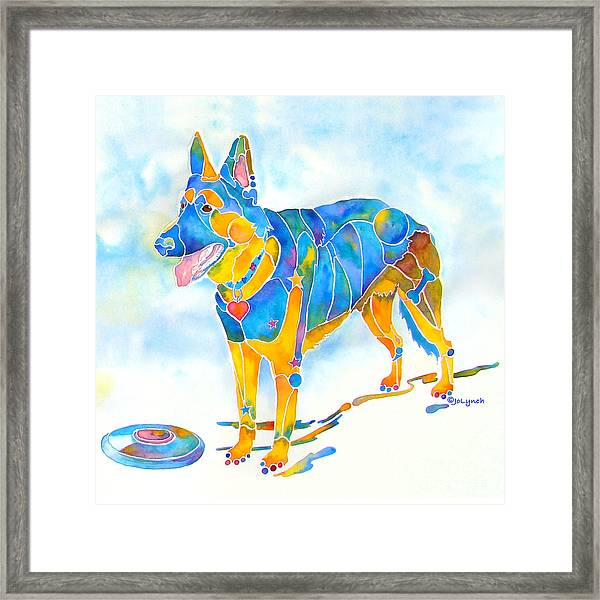 Shepherd With Frisbee - Play With Me Framed Print