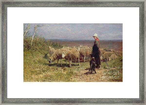 Shepherdess Framed Print