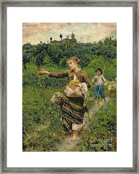 Shepherdess Carrying A Bunch Of Grapes Framed Print