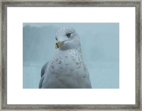 She's Over There Framed Print