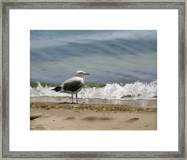Shoreline Breeze Framed Print