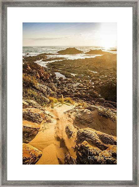 Shoreline Sunshine Framed Print