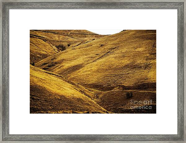 Shorelines Framed Print