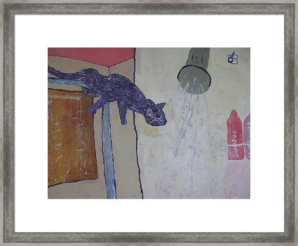 Shower Cat Framed Print