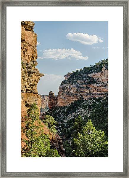 Side Canyon View Framed Print