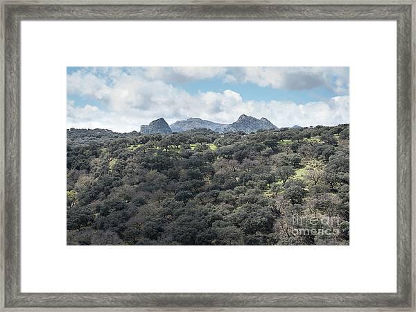 Sierra Ronda, Andalucia Spain Framed Print