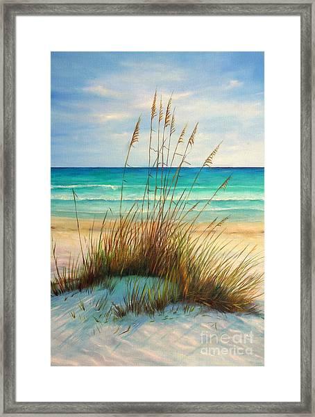 Siesta Key Beach Dunes  Framed Print