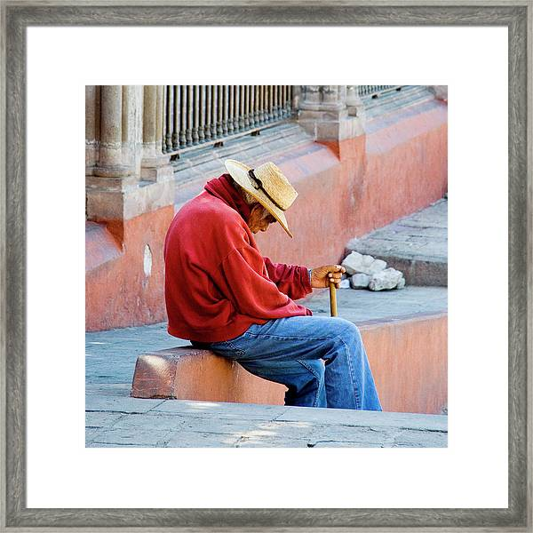 Siesta Time Framed Print