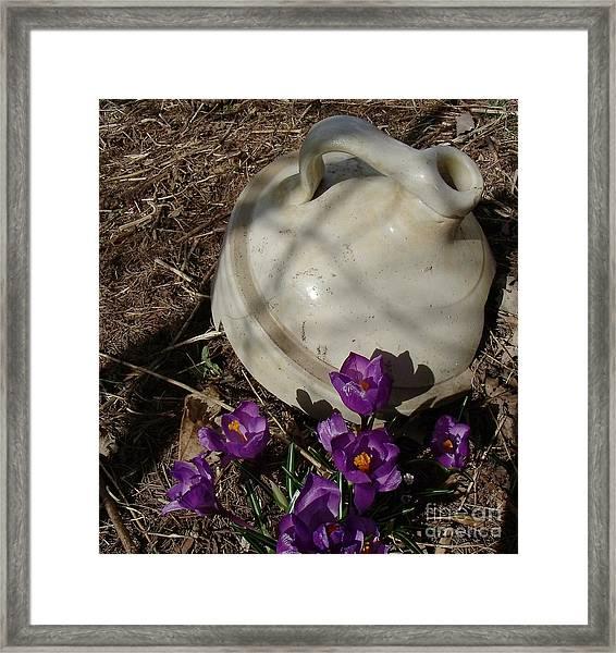 Signs Of Spring 1 Framed Print