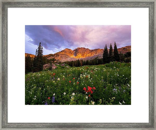 Silent Stirrings Framed Print