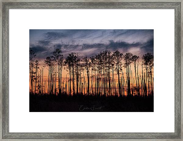 Silhouetted Sunset Framed Print